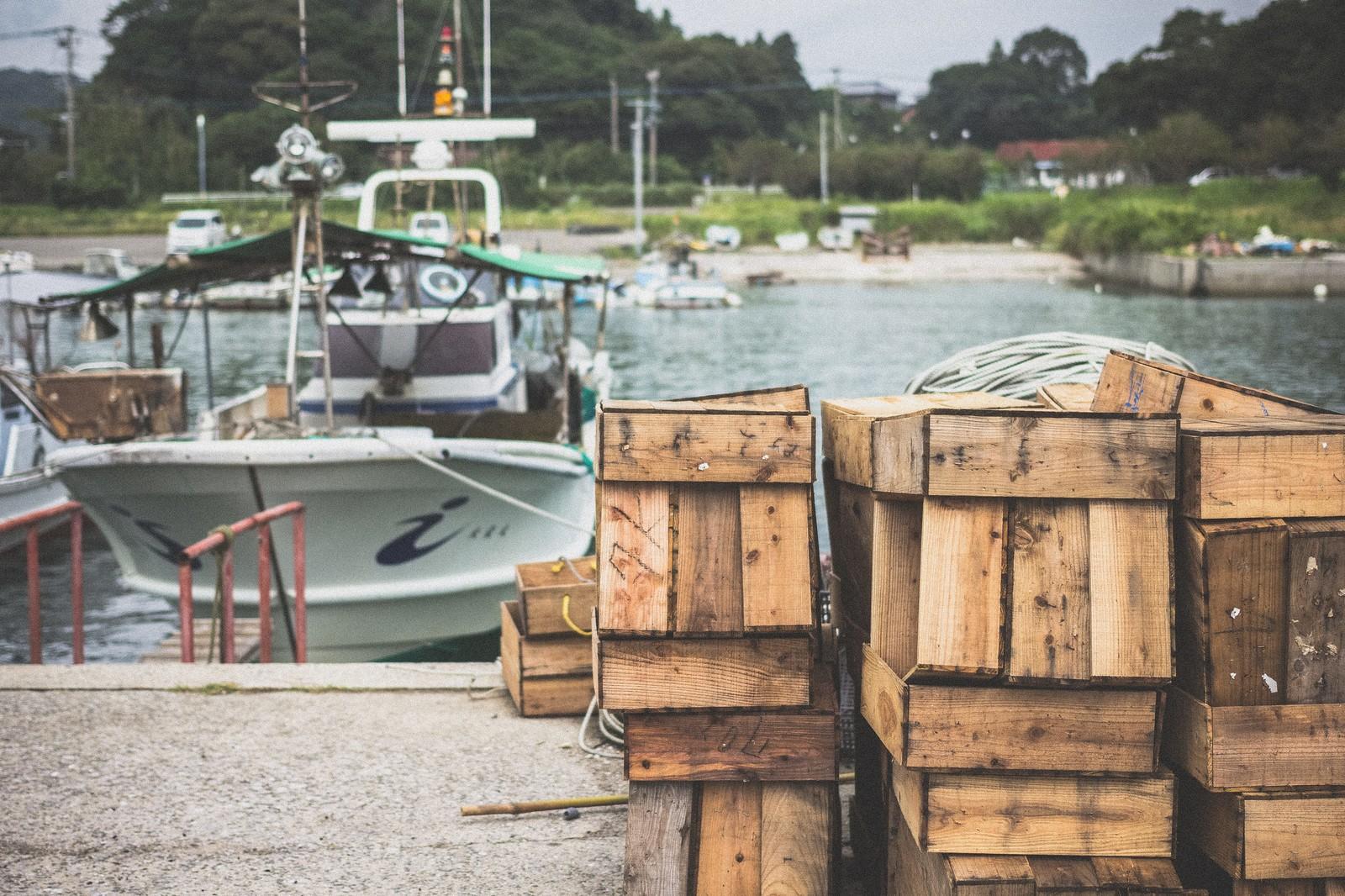 漁師軍団の美人リーダー坪内知佳のプロフと家族や夫について調査した
