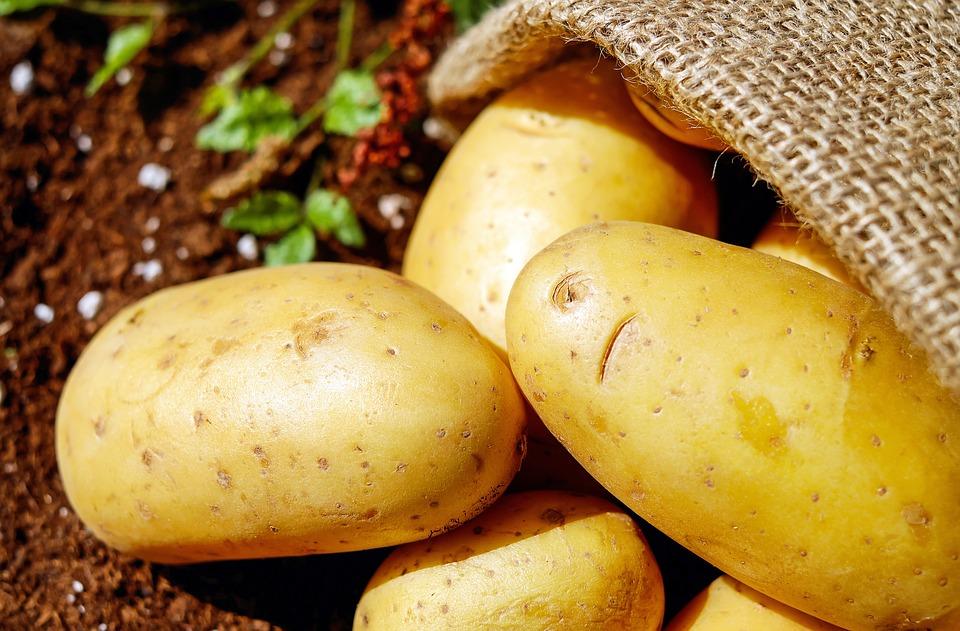 静岡県の三方原馬鈴薯のお取り寄せ・通販方法や激ウマじゃがいもレシピを紹介【青空レストラン】